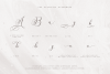 Sunchery Script With Free Extras example image 13