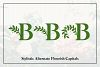Botany Font Family example image 4