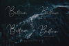 Baltimore // Straight Signature Font example image 2