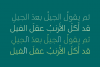 Taleeq - Arabic Typeface example image 4