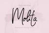 Molita Signature Script Font example image 1