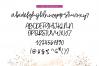 Starfish - Handwritten Script Font example image 7