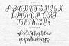 Cabelita Script example image 10