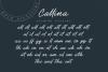 Callina // Bold Signature example image 7