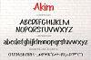 Akim Marker Typeface example image 7