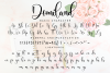Domiland Script example image 11