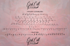 Graf Call New Stylish Script Font example image 12