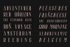 Riffle Font Family example image 9