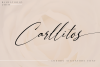Carllitos // Luxury Signature Font example image 1
