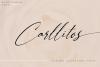 Carllitos // Luxury Signature Font example image 1