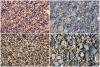 23 Pebble Background Textures example image 2