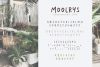 Moolrys example image 5