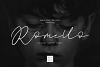 Romello Brush Signature Font example image 1