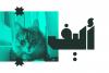 Mateen - Arabic Font example image 13