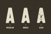 Broscoi - Vintage Font Family - Free font demo link included example image 2