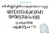 Whaley Fun - A Fun Script Font example image 7