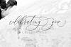 Boutinela Script example image 9