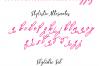 Syakira Script Font example image 6