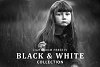 Black & White Collection Lightroom Presets example image 1
