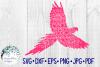 62 File Mega Floral Mandala Animal/Figure SVG Bundle example image 15