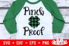 St. Patrick's Day Cut File Bundle example image 25