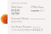 Hellen - Serif Font example image 19