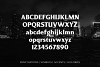 Revans Font Family example image 5