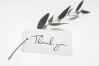 ALIFEA   signature font example image 6