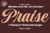 Praise Pro example image 1