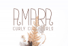 Amara - A Delicate and Curly Font example image 1