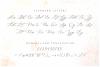 Minimalist Script Font example image 8