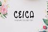 Ceica Handwritten Duo Font + Bonus example image 1