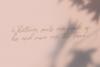 Maldonis Monoline Script example image 8