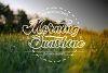 Morning Sunshine example image 1