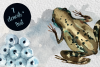 Watercolor Frog Life Cycle Clip Art example image 2
