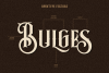 Bulges Typeface example image 2