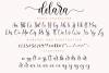 Delara Script example image 11