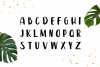 Leira Extended Hand Drawn Brush Font example image 2