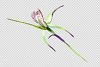 Wild orchid Watercolor png example image 4