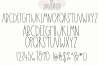 Gingerbread Cookies - A Script Font Duo example image 9