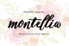 Montellia Brush example image 1