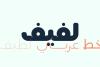 Lafeef - Arabic Typeface example image 2