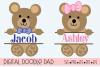 Teddy Bear SVG Split Monogram | Silhouette & Cricut Cut File example image 1