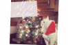 Christmas Words and Phrases - Overlay Font example image 2