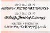 Blush Berry Font Duo - Hand Lettered Script & Sans Serif fon example image 6