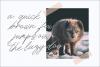 Maldins - Stylish Signature Font example image 8