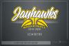Jayhawk, Basketball, Sport, Design, PRINT, CUT, DESIGN example image 5