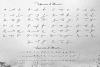 Proudly Signature Script example image 3