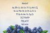 Blueberry example image 3