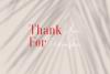 Phillips Muler // Elegant Font Duo example image 10